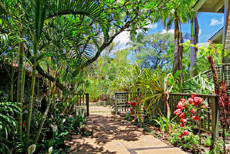 Garden view at Wailea Inn property | Vitally You Retreat Nov 2019
