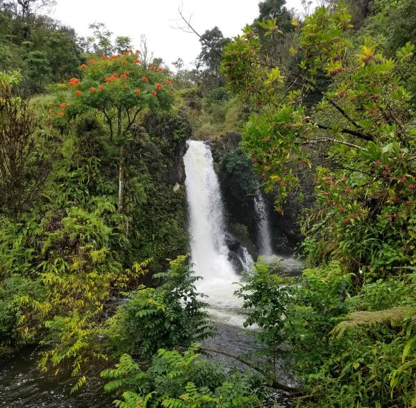 Waterfall on Road to Hana | Vitally You Maui Retreat |Hawaii 2019
