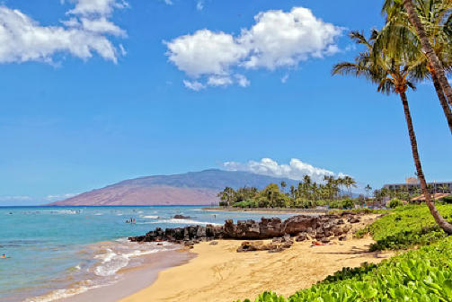 Maui Retreat | beach, sun, palm trees, sand, vacation, relaxation