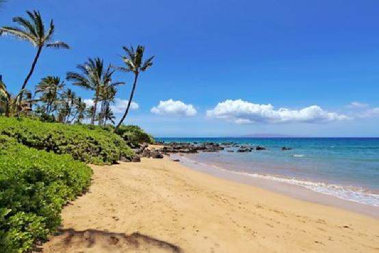 Maui Hawaii | Vitally You Retreat November | Nearby retreat villa