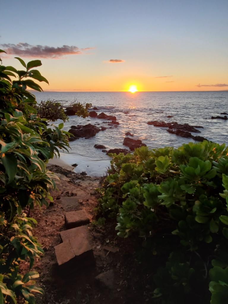 Maui Celestial Retreat | beach, sun, palm trees, relaxing, Angels